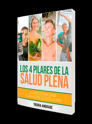 Los-4-Pilares-De-La-Salud_opt